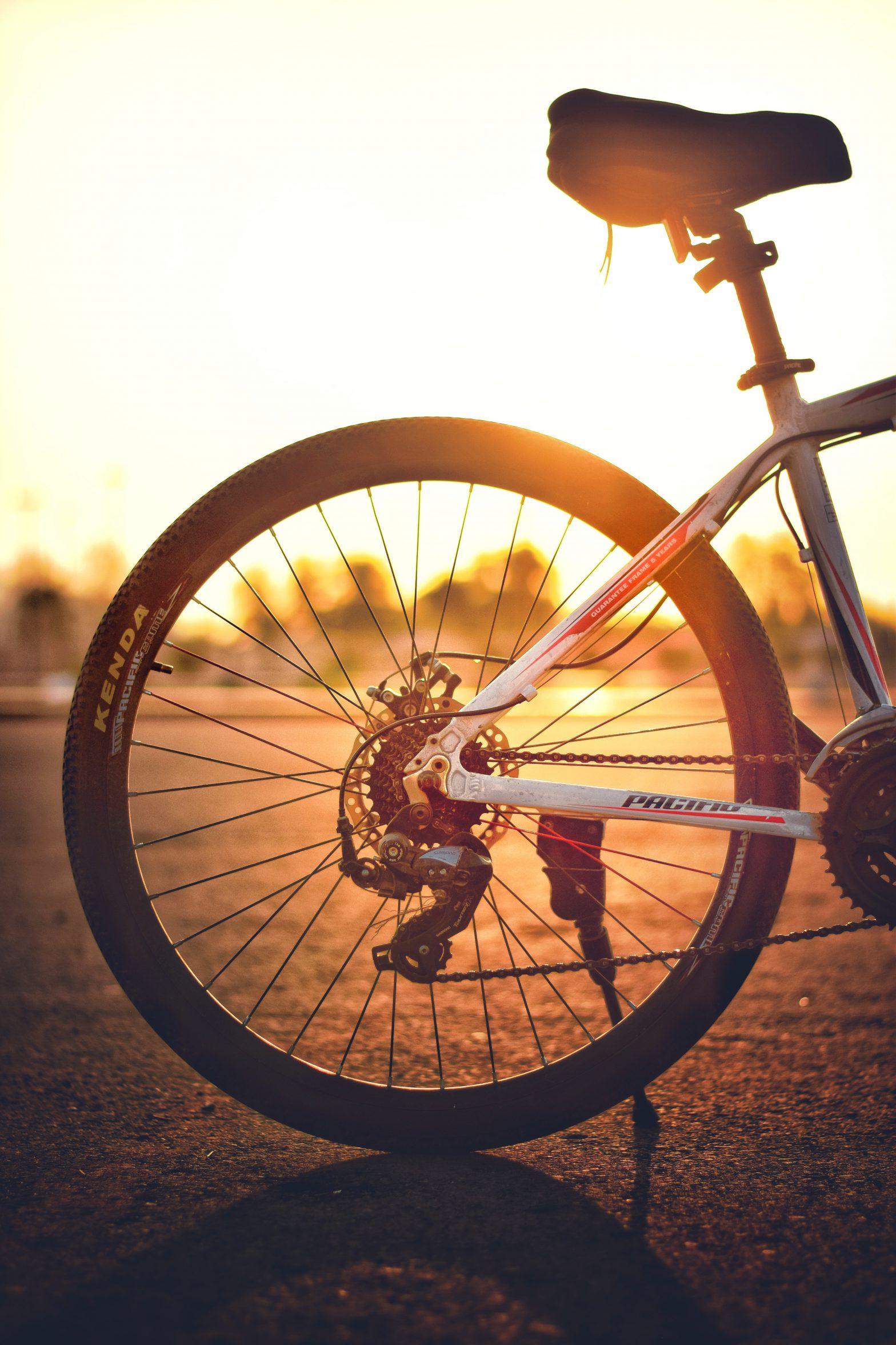 fietsendrager kopen