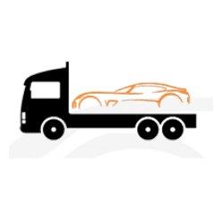 logo transport rosa